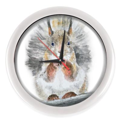 Настенные часы Белочка!