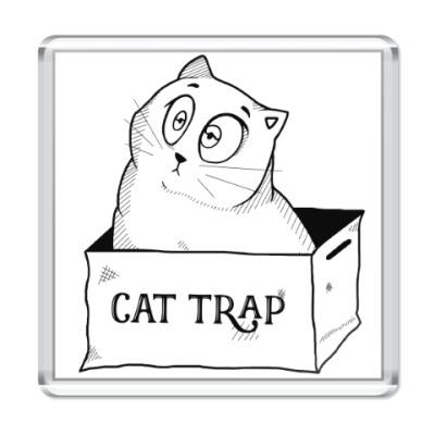 Магнит Ловушка для кота