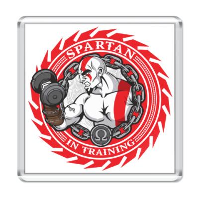 Магнит Спартанцы тренируются