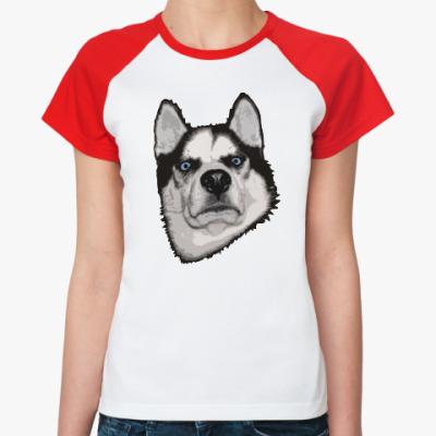Женская футболка реглан Суровый Хаски