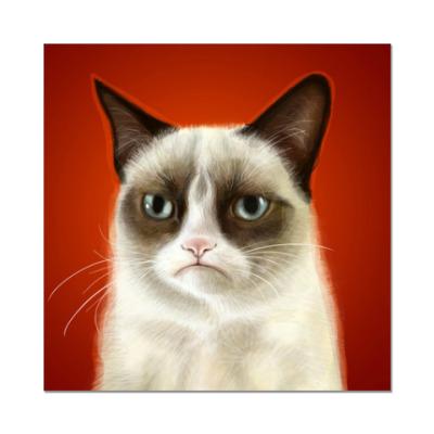 Наклейка (стикер) Сварливый кот