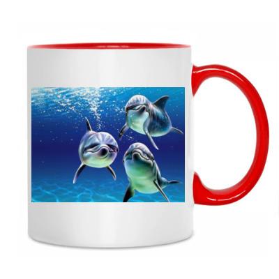 Delphins