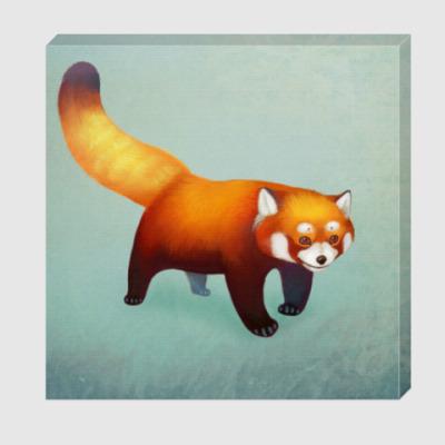 Холст Красная панда