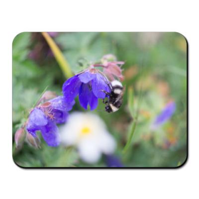 Коврик для мыши Шмель на цветке
