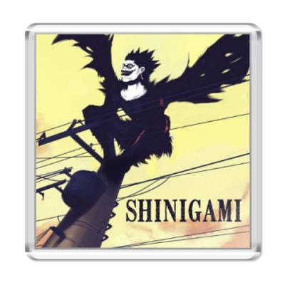 Магнит  Shinigami