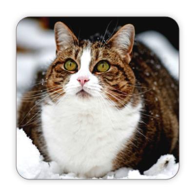 Костер (подставка под кружку) Котик пузатик