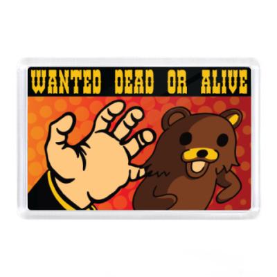 Магнит Pedobear: Wanted Dead or Alive