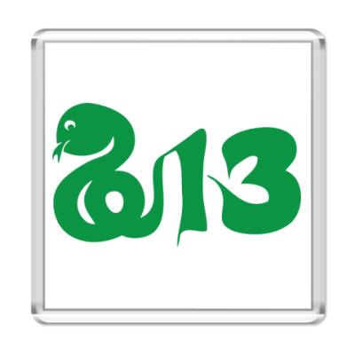 Магнит Змея-2013 год