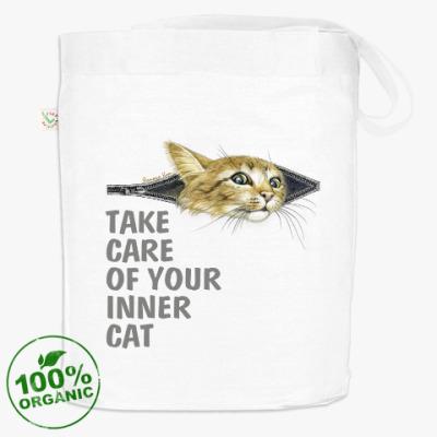 Береги своего  Кота