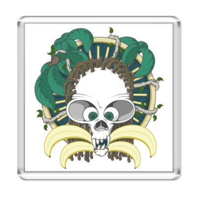 Магнит Dead Monkey