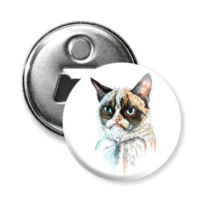 Магнит-открывашка Грустный кот