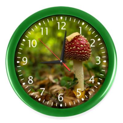 Настенные часы Мухомор