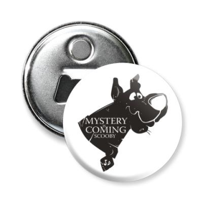 Магнит-открывашка Mystery is coming