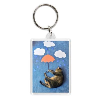 Кот на зонтике