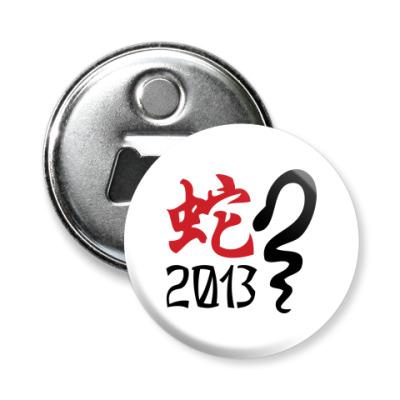 Магнит-открывашка Новогодний принт Змея-2013 год
