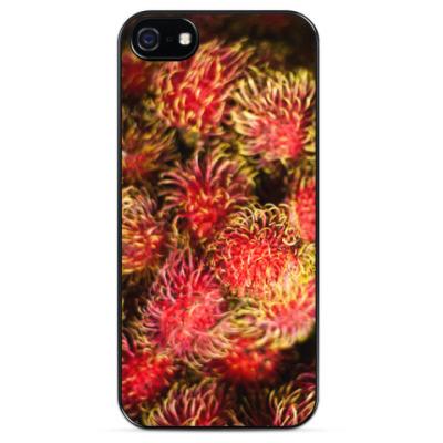 Чехол для iPhone Рамбутаны / Rambutan