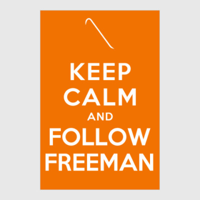 Постер Follow Freeman