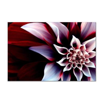 Наклейка (стикер)  Тропический цветок