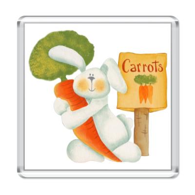 Магнит Carrots - туда!
