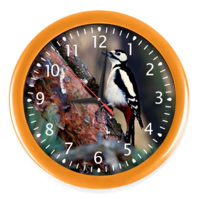 Настенные часы Дятел