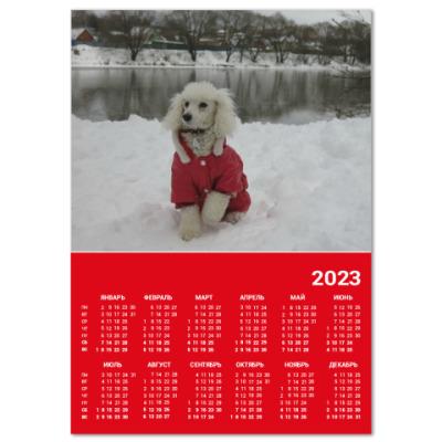 Календарь 'Пудель'