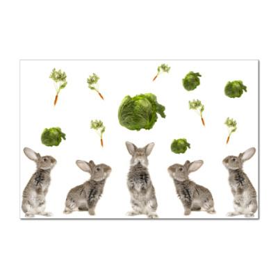 Наклейка (стикер)  Rabbits with Cabbage