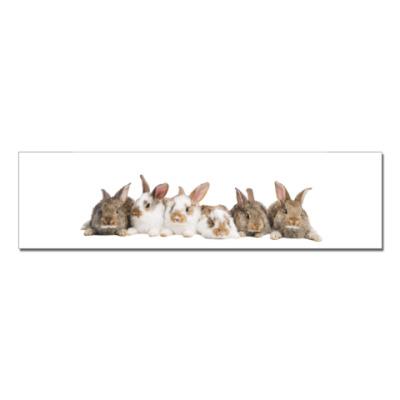 Наклейка (стикер)  Rabbits