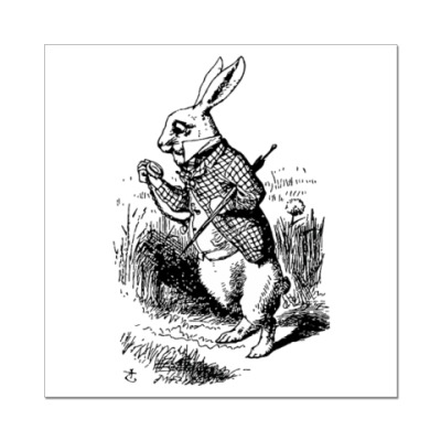 Наклейка (стикер) В кроличью нору