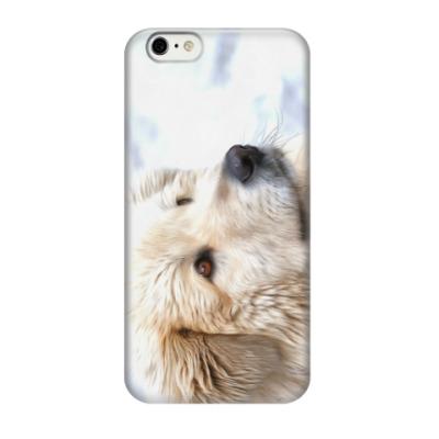Чехол для iPhone 6/6s Собака