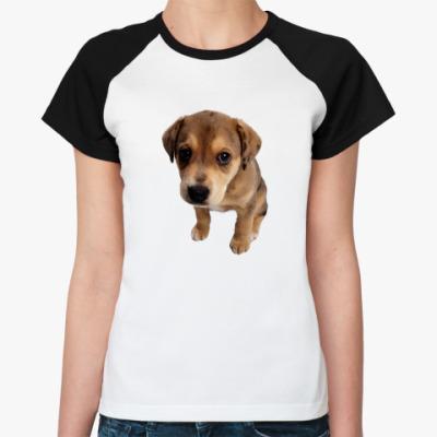 Женская футболка реглан щенок