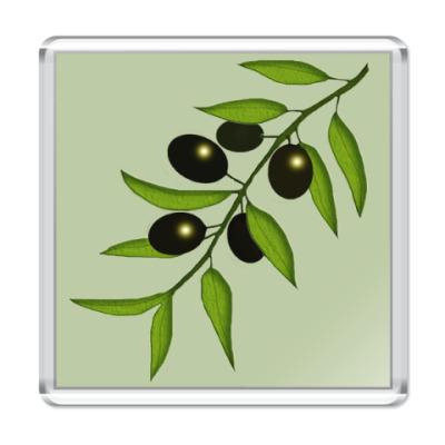 Магнит  Ветка с маслинами