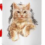 Кот в карандашах