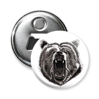 Магнит-открывашка Медведь