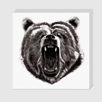 Холст Медведь