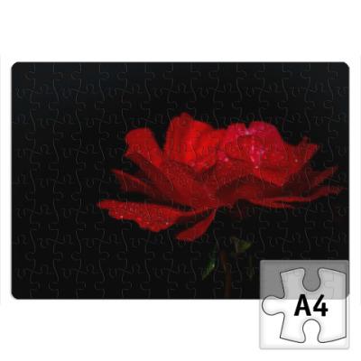 Пазл Роскошный цветок