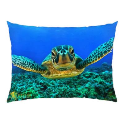 Подушка Черепаха